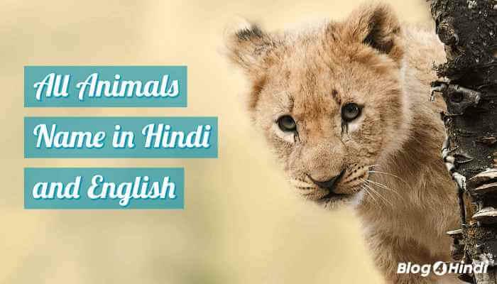 पालतू और जंगली जानवरों के नाम हिंदी में